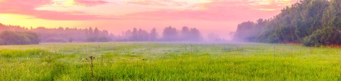 Paysage vibrant avec le pré brumeux en Pologne photos stock