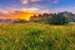 Paysage vibrant avec le pré brumeux en Pologne photo stock