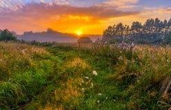 Paysage vibrant avec le pré brumeux en Pologne image stock