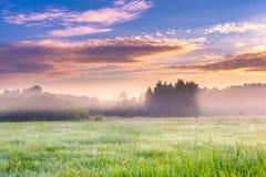 Paysage vibrant avec le pré brumeux en Pologne image libre de droits