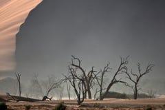 Paysage vide de désert de Namib Photo stock