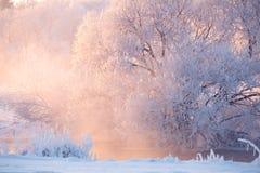 Paysage vif d'hiver images libres de droits