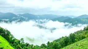 Paysage visuel de laps de temps de brume de matin dans la saison des pluies clips vidéos