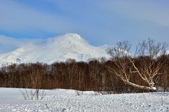 Paysage volcanique de bel hiver Images libres de droits