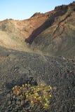Paysage volcanique en La Palma Les Îles Canaries l'espagne Photos stock