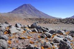 Paysage volcanique spartiate du désert d'Atacama Photo libre de droits