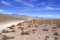 Paysage volcanique spartiate du désert d'Atacama Photographie stock