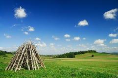 Paysage, vue des champs verts de roulement photographie stock
