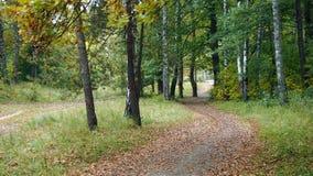 Paysages d'automne Photos libres de droits