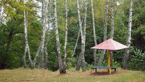 Paysages d'automne Image stock