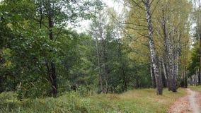 Paysages d'automne Photographie stock libre de droits