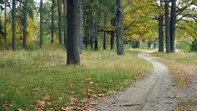 Paysages d'automne Photo stock