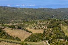 Paysages de la Toscane dans le chianti de Radda image libre de droits