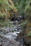 Paysages de Nanaimo photographie stock libre de droits