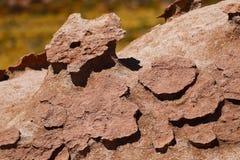 Paysages du désert d'Atacama, Chili image libre de droits