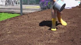 Paysagiste Woman dans des bottes de caoutchouc jaunes répandant la graine d'herbe Mouvement de cardan clips vidéos