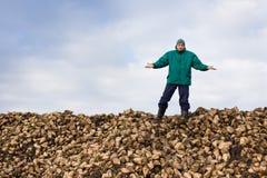 Paysan avec la betterave à sucre photos libres de droits