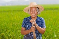 Paysan chinois photographie stock libre de droits