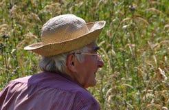 Paysan que trabaja en campos de Francia meridional Imágenes de archivo libres de regalías