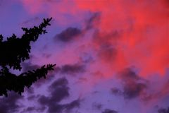 Paz Foto de Stock Royalty Free