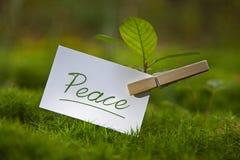 Paz Imágenes de archivo libres de regalías