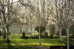 Paz de la mañana del cementerio Imágenes de archivo libres de regalías