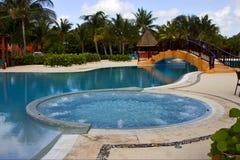 Paz de la palma del árbol de la piscina de México Imagenes de archivo