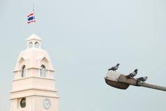 Paz em Tailândia Fotografia de Stock Royalty Free