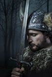 Paz, guerrero de Viking  imagen de archivo
