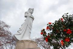 A paz Kannon de Funaoka e as árvores de cereja no cume do castelo de Funaoka arruinam o parque, Shibata, Tohoku, Japão Imagens de Stock Royalty Free