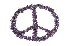 Paz para tudo Fotografia de Stock