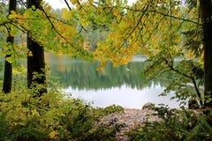 Paz y serenidad en el lago, parque de estado de terreno de batalla, Lewisville, Washington, los E.E.U.U. fotos de archivo