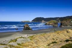 Pazifikküste Stockfotos