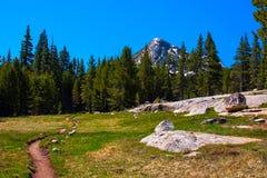 Pazifische Scheitel-Spur entlang Lyell Gabel von Tuolumne Fluss, Yosemite Lizenzfreie Stockbilder