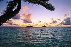 Pazifischer Sonnenaufgang in Hawaii lizenzfreie stockfotografie