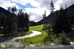 paznauntal高山奥地利的草甸 库存照片