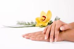 paznokcie kwiatów Zdjęcia Stock