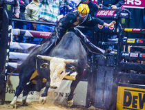 PBR bull riding world finals Royalty Free Stock Images