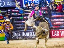 PBR byka jeździeccy światowi finały Obrazy Royalty Free