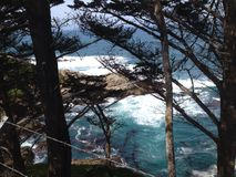 Pch Shoreline Fotografia Stock
