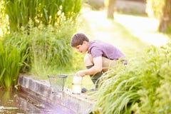 Pêche de garçon dans l'étang avec le filet et le pot Photo stock