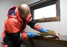pêcheur de découpage des filets de morue Image libre de droits