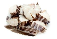 Pêchez la chimère, le lapin de mer ou le rat de mer sur le fond blanc Photos stock