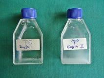 PCR Стоковые Изображения
