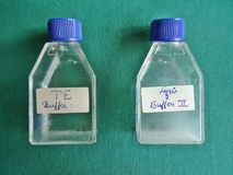 PCR. The reagents used in the process of Polymerase Chain Reaction Stock Images