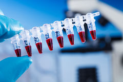 PCR supplies for genetic research.  Royalty Free Stock Images
