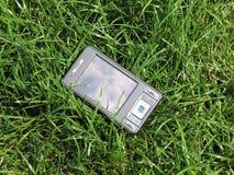 pda dans l'herbe Image libre de droits