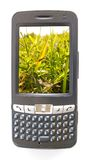 Pdaphone. And grass with mobility wireless Stock Images