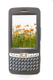Pdaphone and flowers. With mobility wireless Stock Image