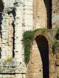 Peça da parede antiga da pedra e de tijolo com um arco coberto em parte na obscuridade - planta viny verde fotografia de stock royalty free